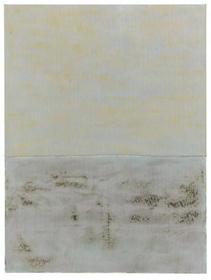 Saline Kraken by Sergej Jensen contemporary artwork