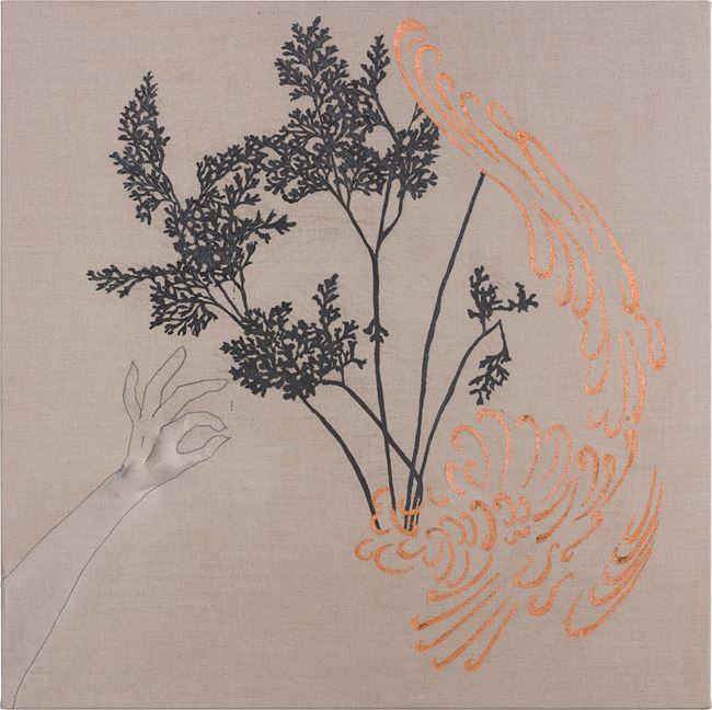 Arrangement for The Galapagos (Gymnogramma chaerophylla, after Darwin) by Caroline Rothwell contemporary artwork