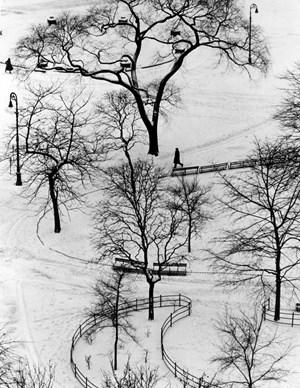 Washington Square Day by André Kertész contemporary artwork