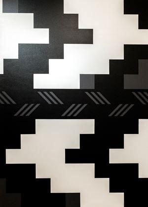 Manu Rerenga, Waewae Pākura by Kelcy Taratoa contemporary artwork