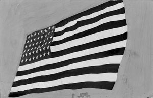 Old Glory Contact by Sebastian Riemer contemporary artwork