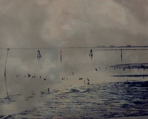 Laguna #15 by Euro Rotelli contemporary artwork