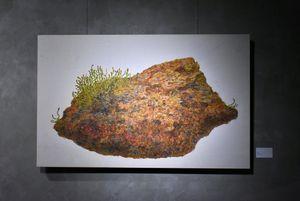 Cartesian Diver by Shiori Horie contemporary artwork