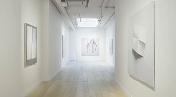 Contemporary art exhibition, Alison Watt, A Shadow on the Blind at Parafin, London