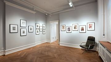 Contemporary art exhibition, Group Exhibition, Her Gaze: Sixty Years of Women in Photography at Lévy Gorvy, Zurich
