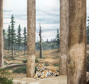 Tiger and forest by Eric Pillot contemporary artwork