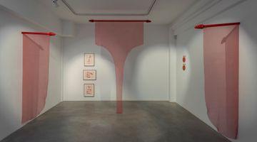 Contemporary art exhibition, Gal Leshem, Looking for Rubia Tinctorum at Huxley-Parlour, London