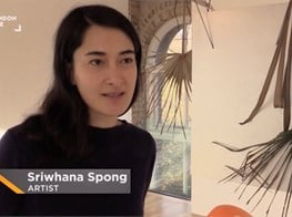 Sriwhana Spong : 'a hook but no fish'