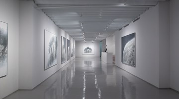 Contemporary art exhibition, Hiroshi Senju, At World's End at Sundaram Tagore Gallery, Chelsea, New York