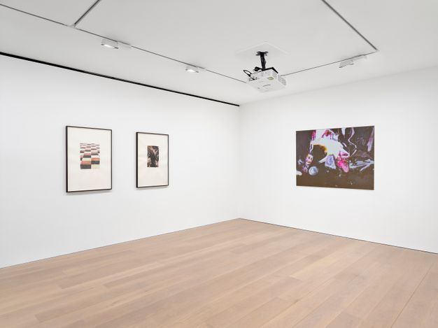 Exhibition view: Luc Tuymans, Monkey Business, David Zwirner, London (15 April–22 May 2021). Courtesy David Zwirner.