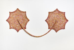 Assim me encontro neste lugar, BarrigaFlora FloraBarriga (This is how I find myself at this place, BellyFlora FloraBelly) by Ernesto Neto contemporary artwork