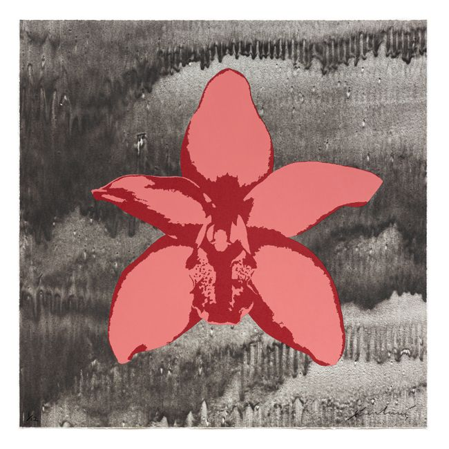 Cymbidium Orchid by Russel Wong contemporary artwork
