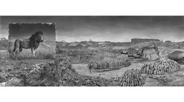 Contemporary art exhibition, Nick Brandt, Inherit the Dust at Blue Lotus Gallery, Hong Kong