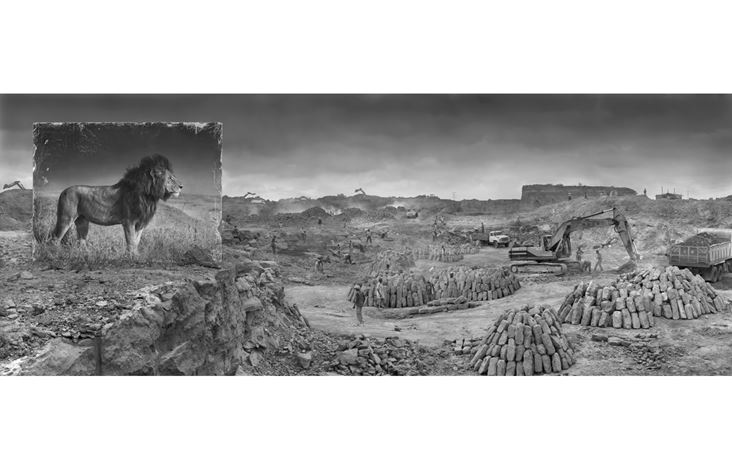Nick Brandt, 'Quarry with Lion' Kenya(2014).Archival Pigment Print on Fine Art Paper.66 × 171.7 cm,96.5 × 251 cm. Courtesy Blue Lotus Gallery, Hong Kong.