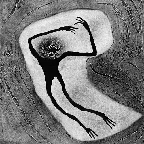Embroyotic by Roger Ballen contemporary artwork