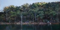 Last Light, Smiths Creek (Hawkesbury 20) by A.J. Taylor contemporary artwork painting