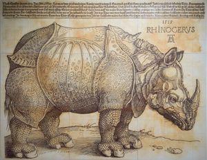 The Rhinoceros by Kichang Choi contemporary artwork print