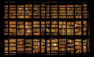Kings Library, London by Ahmet Ertug contemporary artwork