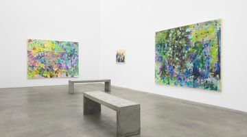 Contemporary art exhibition, Sarah Ann Weber, Strong Blossoming Thing Forever at Anat Ebgi, Culver City, Los Angeles