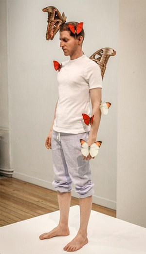 Papillons (Butterflies) by Fabien Mérelle contemporary artwork