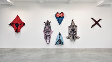 Contemporary art exhibition, Annette Messager, Sleeping Songs at Galerie Marian Goodman, Paris