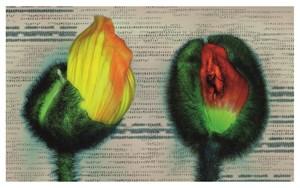 Doppelmohn Böse (Double Poppy Evil) by Hans-Joachim Ellerbrock contemporary artwork