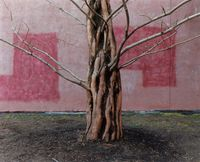 Salem, MA USA by Yoko Ikeda contemporary artwork photography