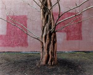 Salem, MA USA by Yoko Ikeda contemporary artwork