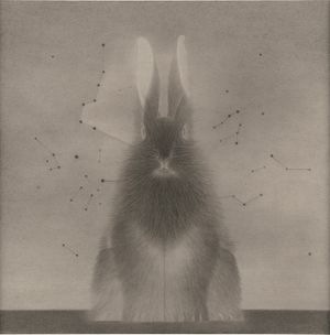 In the Name of Rabbit 121 by Shao Fan contemporary artwork painting, works on paper, drawing