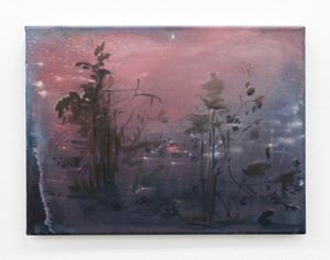 pink mineral by Elizabeth Magill contemporary artwork