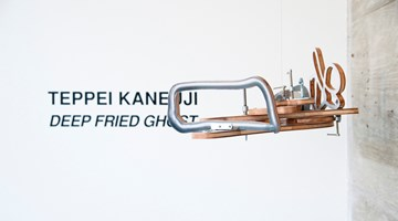Contemporary art exhibition, Teppei Kaneuji, Deep Fried Ghost at Jane Lombard Gallery, New York
