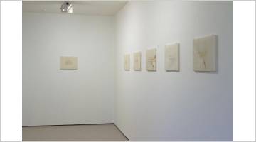 Contemporary art exhibition, Mary-Louise Browne, Picturing at Bartley & Company Art, Wellington