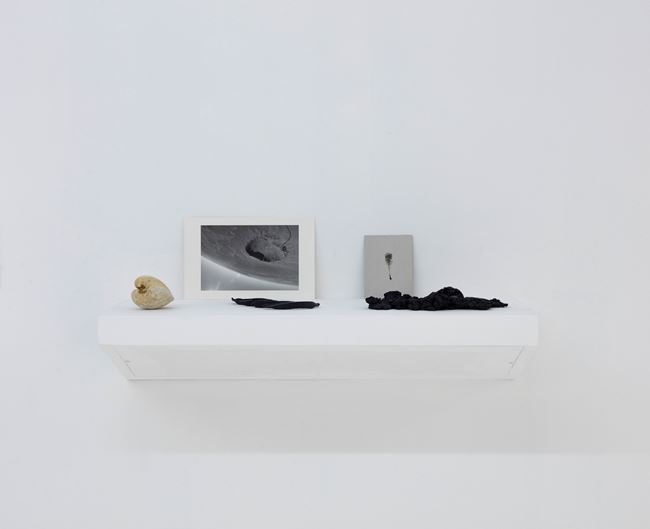 Untitled 无题 by Alice Wang contemporary artwork