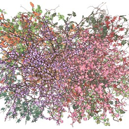 Jennifer Steinkamp contemporary artist
