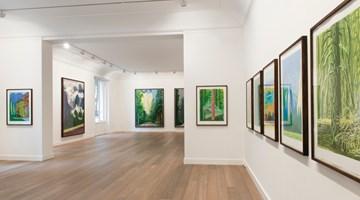 Contemporary art exhibition, David Hockney, The Yosemite Suite at Galerie Lelong & Co. Paris, 13 Rue de Téhéran, Paris