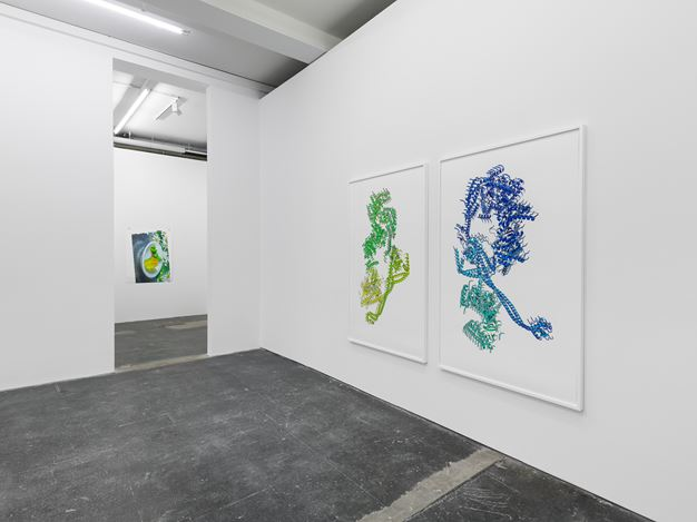 Exhibition view: Ran Zhang, Enantiomers and traces, Galeria Plan B, Berlin (9 September–24 October 2020). Courtesy Galeria Plan B.