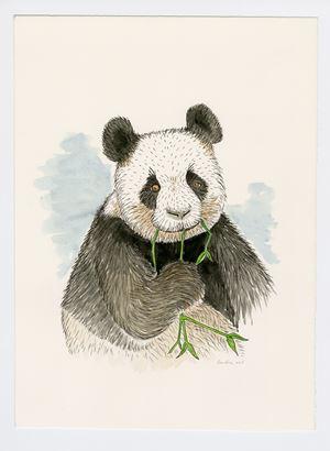 Panda by Sean Landers contemporary artwork