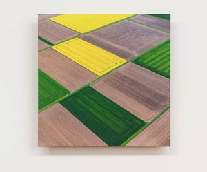 Field study I - Floating Rectangles, after Ben Nicholson by Elizabeth Thomson contemporary artwork