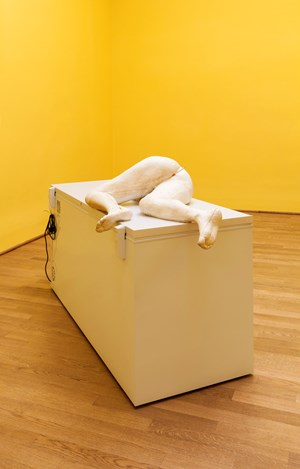 Margot by Sarah Lucas contemporary artwork