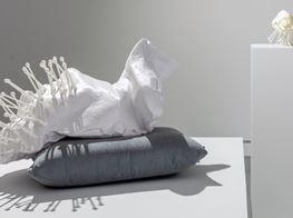 Michael Joo Amplifies the Invisible at Kavi Gupta