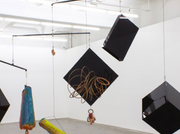 Mikala Dwyer Is The Winner Of The 2014 Melbourne Art Foundation Artist Commission