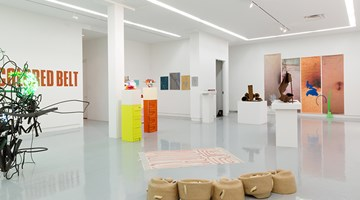 Contemporary art exhibition, Group Exhibition, ASSISTED at Kavi Gupta, Elizabeth St, Chicago