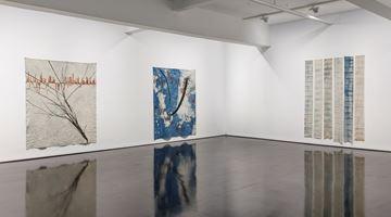 Contemporary art exhibition, Judy Watson, memory scars, dreams and gardens at Tolarno Galleries, Melbourne, Australia