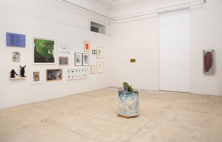 Exhibition view: Lois Weinberger, field work, Galerie Krinzinger, Vienna (8 June–21 August 2021). Courtesy Galerie Krinzinger.