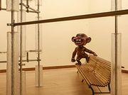 Te Papa's new art gallery Toi Art labelled a 'phenomenal creative success'