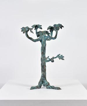 Figuier by Setsuko Klossowska De Rola contemporary artwork