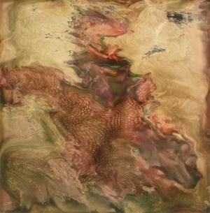 Photo-Transformation by Lucas Samaras contemporary artwork