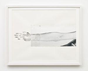 Svolgere la propria pelle - Coincidenza d'immagine 13 giugno 1970 by Giuseppe Penone contemporary artwork