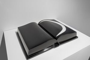 Without words (Book series) by Aidan Salakhova contemporary artwork