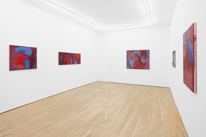 Exhibition view: Julia Dubsky, M/Modesty, Amanda Wilkinson Gallery, London (12 February–17 April 2021). Courtesy Amanda Wilkinson Gallery.